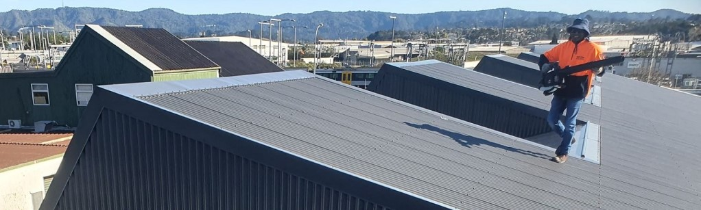 new-metal-roof-auckland